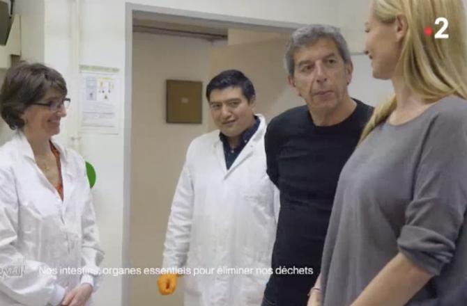 Michel Cymes mal à l'aise après avoir donné ses selles pour une expérience (VIDEO)