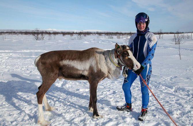 Norvège, la princesse des rennes (Arte) La femme qui murmure à l'oreille des rennes