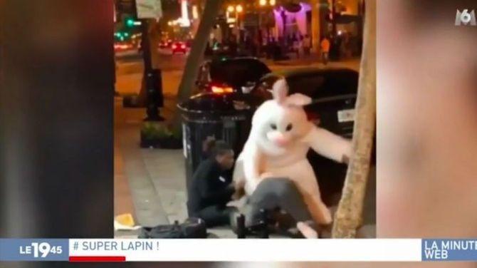 Bande-annonce > Zapping du 24/04 : Un lapin de Pâques se bagarre en pleine rue - Télé 7 Jours